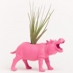 DINOSAUR AIR PLANTER